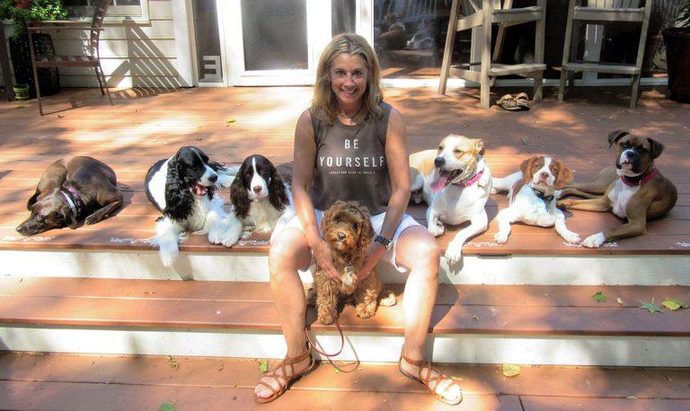Contact Elaine Hope Poulin Trained by Elaine™ Carolina Dog Training Pack Sitters