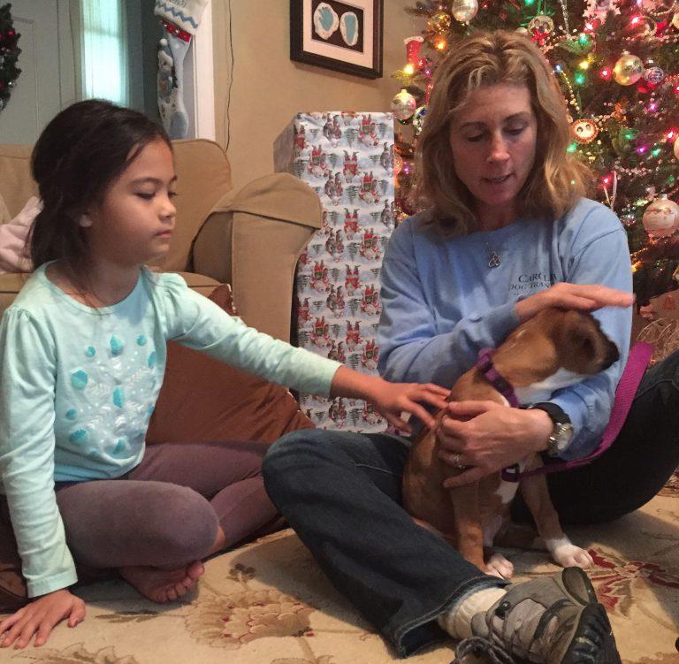 Carolina Dog Training Family Puppy Orientation - child with new dog