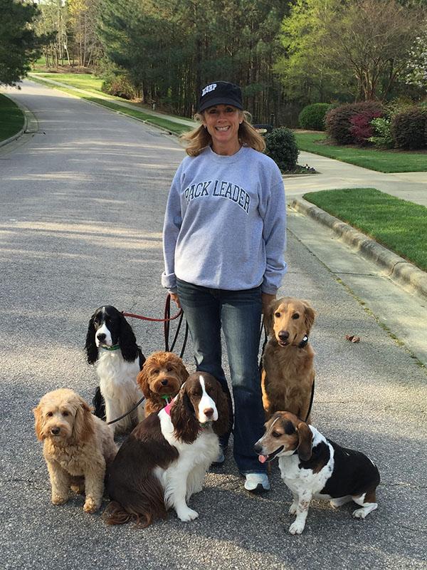 Carolina Dog Training Pack Sitters Trained by Elaine dog canine puppy training walking