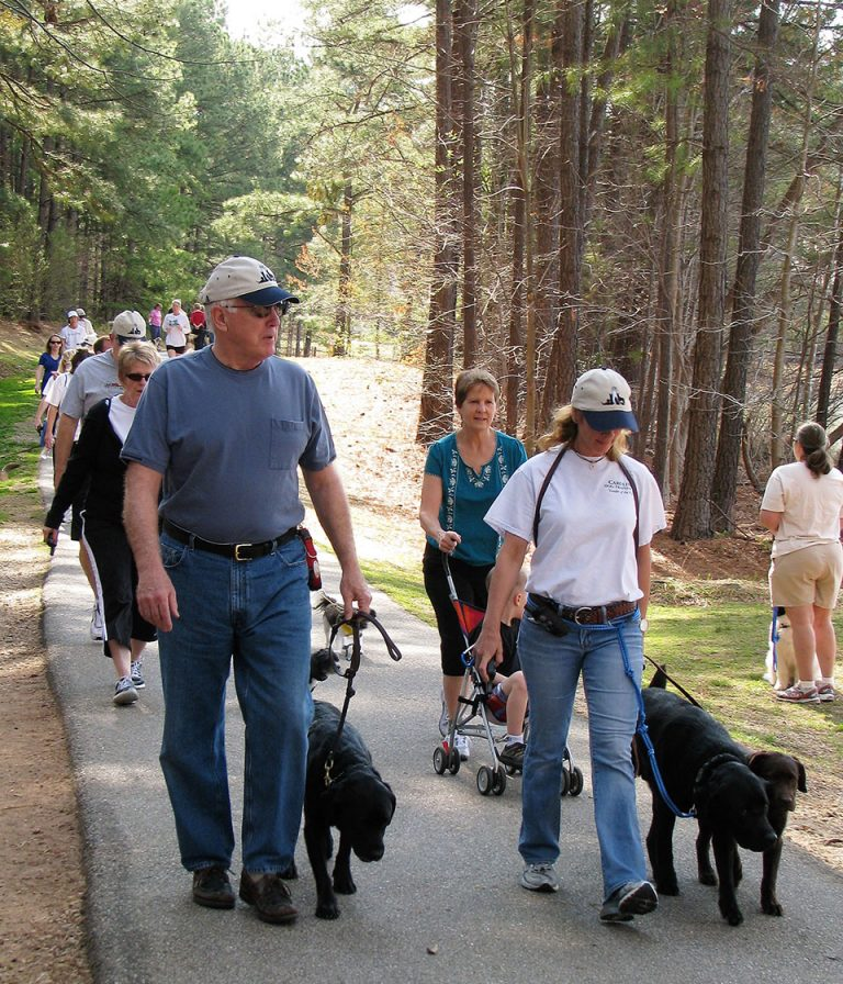 Small Group Class For Dog / Puppy Training, Behavior, And